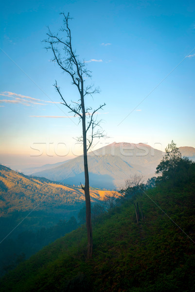 Ver paisagem cratera Indonésia vulcânico montanhas Foto stock © dinozzaver