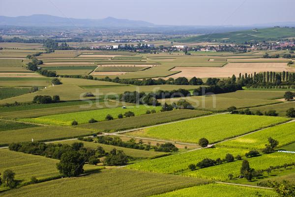 Agrícola paisagem completo campos fazenda agricultura Foto stock © dinozzaver