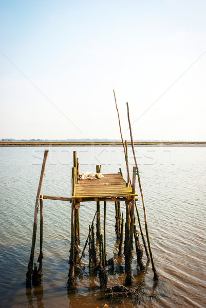 Oude houten pier strand water natuur Stockfoto © dinozzaver