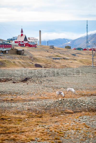 Reno iglesia casa ciudad paisaje montana Foto stock © dinozzaver