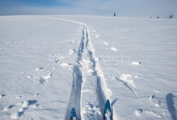 Cross country ski track Stock photo © dinozzaver