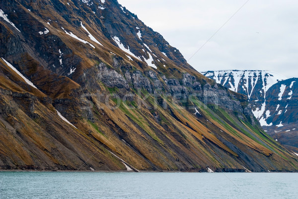 Svalbard Cliffs, Uglefjellet Stock photo © dinozzaver