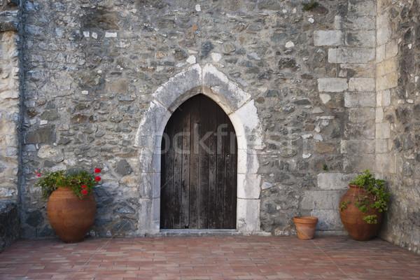 Vecchio porta chiuso fiori fiore casa Foto d'archivio © dinozzaver
