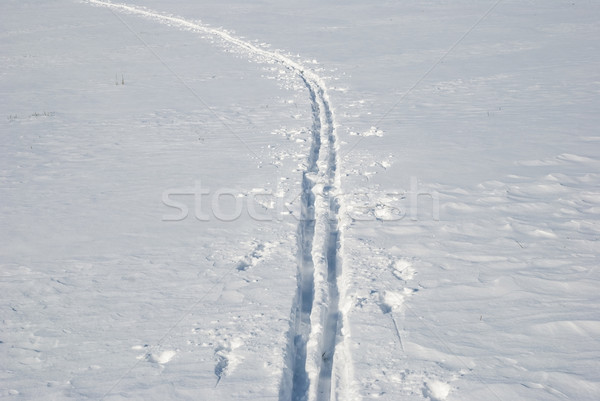 Stock photo: Cross country ski track