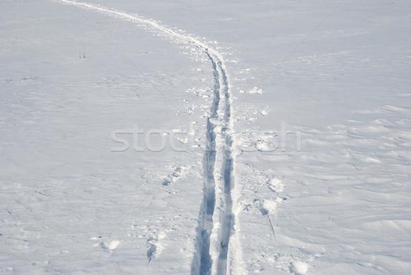 Сток-фото: крест · стране · лыжных · трек · лес · снега