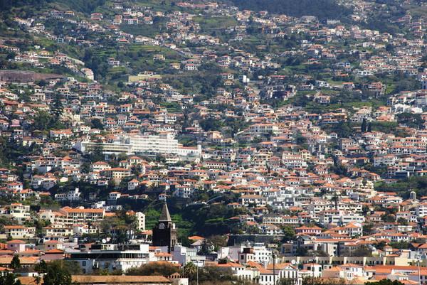 Madeira ilha Portugal montanha edifícios tropical Foto stock © dinozzaver