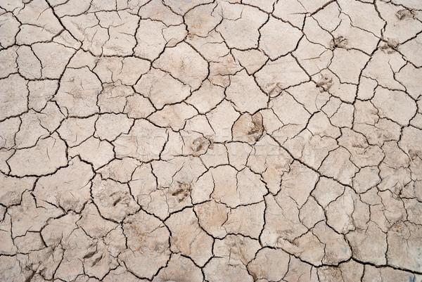 Usuce crapat sol animal urme textură Imagine de stoc © dinozzaver