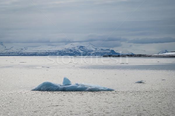 Icebergs floating in the arctic sea in Svalbard Stock photo © dinozzaver