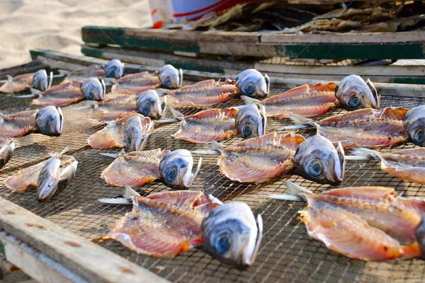 魚 クローズアップ 外 食品 肉 釣り ストックフォト © dinozzaver