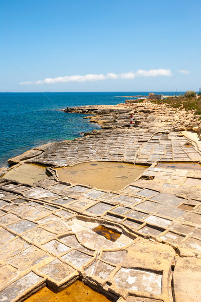 Evaporation ponds at the coast, Malta Stock photo © dinozzaver