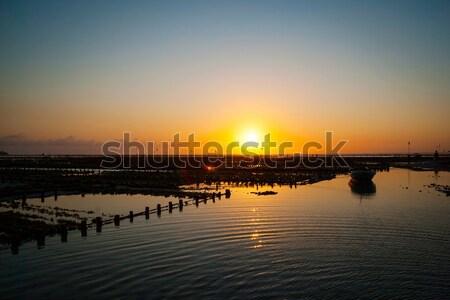 Fazenda campo pôr do sol Indonésia água comida Foto stock © dinozzaver
