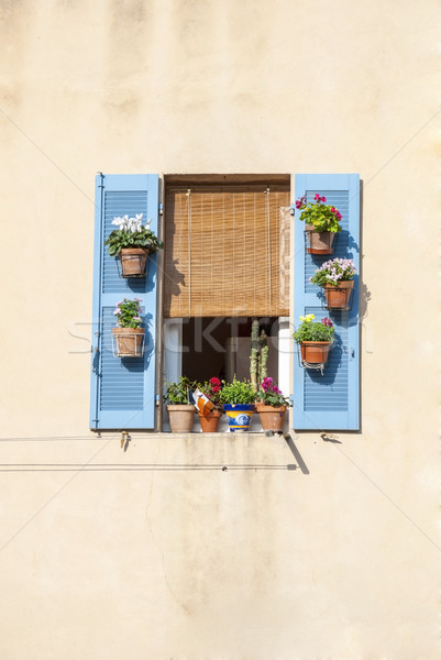 Window with blue shutters and flowers Stock photo © dinozzaver