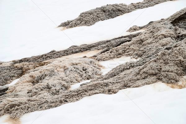 Karışım kar su hareketli Stok fotoğraf © dinozzaver