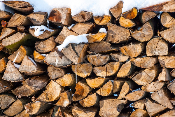 Stacked wood pine timber in winter Stock photo © dinozzaver