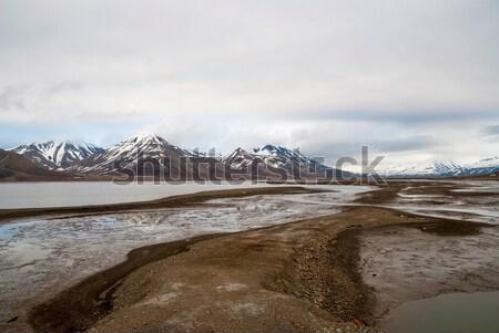Arctic tundra in early summer mud, Svalbard Stock photo © dinozzaver