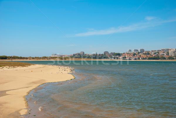 Spiaggia di sabbia naturale riserva Portogallo uccelli acqua Foto d'archivio © dinozzaver