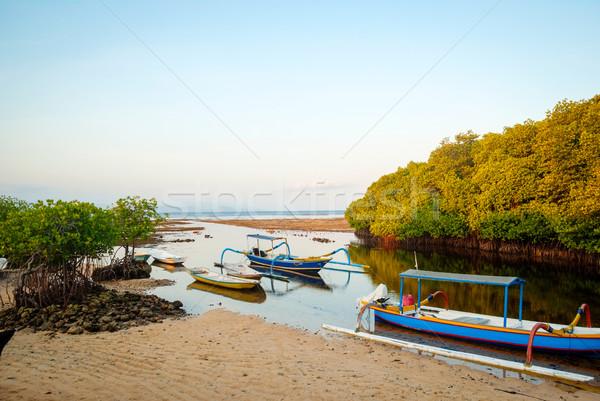 森林 島 インドネシア 低い 潮 典型的な ストックフォト © dinozzaver