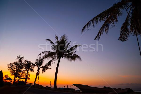 Stockfoto: Kleurrijk · zonsondergang · palmboom · silhouetten · Indonesië · boten
