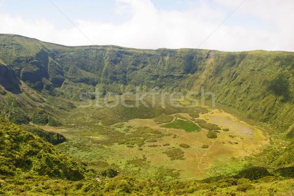 Stockfoto: Vulkanisch · krater · eiland · bloem · water