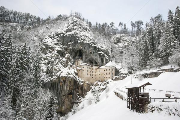 城 冬 スロベニア 建物 風景 雪 ストックフォト © dinozzaver