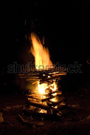 Grande fogueira ardente madeira natureza laranja Foto stock © dinozzaver