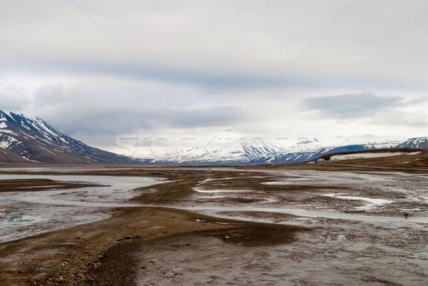 Stock photo: Arctic tundra in early summer mud, Svalbard