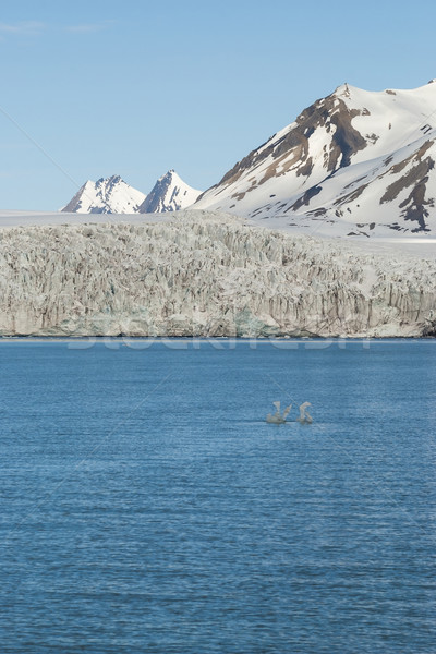 Stok fotoğraf: Buzul · arktik · dağlar · arkasında · doğa · manzara