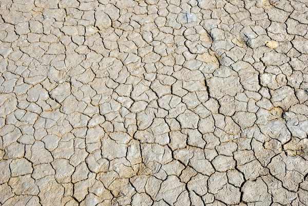 Dry cracked land Stock photo © dinozzaver