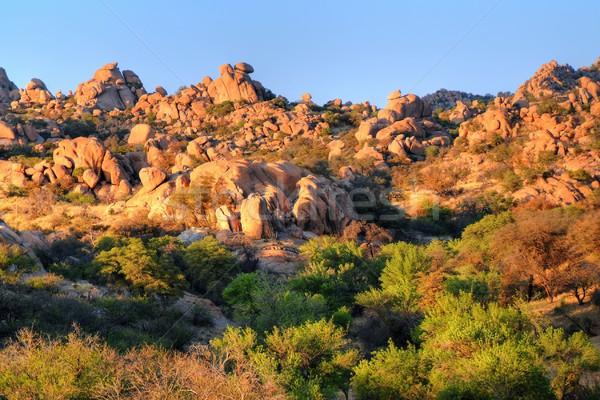 Napfelkelte Texas kanyon délkelet Arizona korai Stock fotó © diomedes66