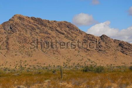 çöl dağ bulutlar Arizona dağlar doğa Stok fotoğraf © diomedes66