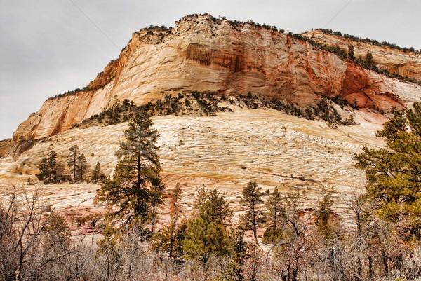 Park déli Utah USA természet hegy Stock fotó © diomedes66