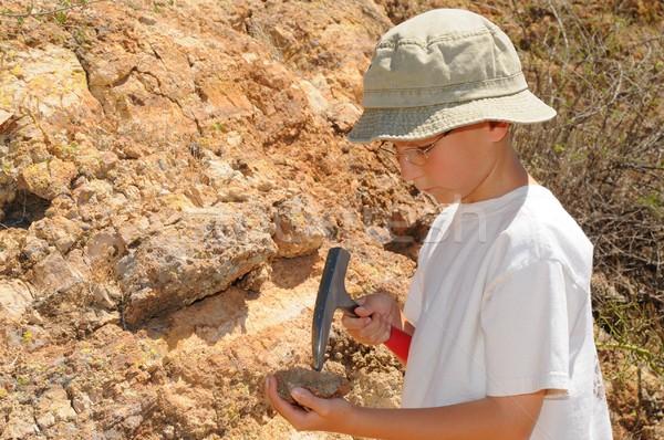 Garçon géologie étudiant sur domaine Photo stock © diomedes66