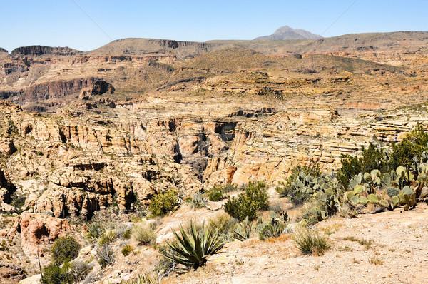 砂漠 峡谷 アリゾナ州 梨 工場 空 ストックフォト © diomedes66