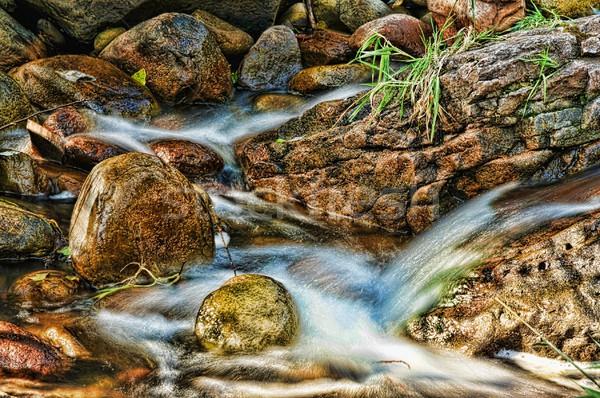 高速 ストリーム 小川 北 アリゾナ州 山 ストックフォト © diomedes66