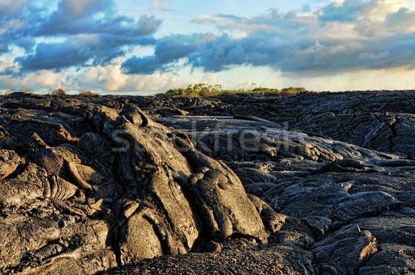 Lava stroom textuur Blauw steen zwarte Stockfoto © diomedes66