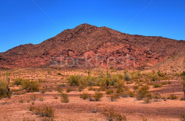 砂漠 山 アリゾナ州 空 日没 ストックフォト © diomedes66