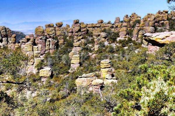 юго-восток Аризона дерево пейзаж горные человек Сток-фото © diomedes66