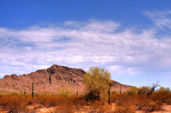 Desert Mountain Stock photo © diomedes66