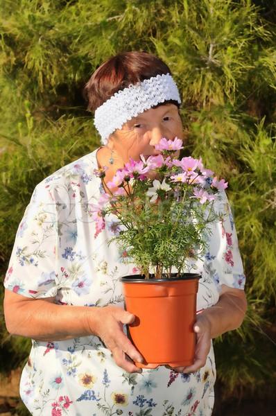Senior Woman Gardening Stock photo © diomedes66
