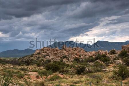 Texas kanyon viharos időjárás délnyugat Arizona Stock fotó © diomedes66