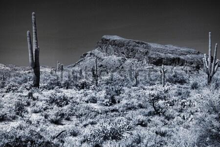 Egyenetlen hegy Arizona sivatag égbolt tájkép Stock fotó © diomedes66