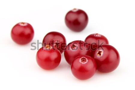 Ripe cranberry Stock photo © Dionisvera