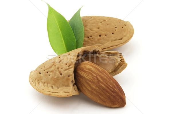 Almond Stock photo © Dionisvera