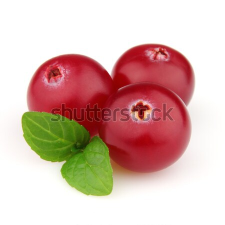 Cranberry with mint Stock photo © Dionisvera