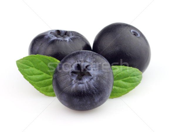 Blueberry with leaves of mint Stock photo © Dionisvera