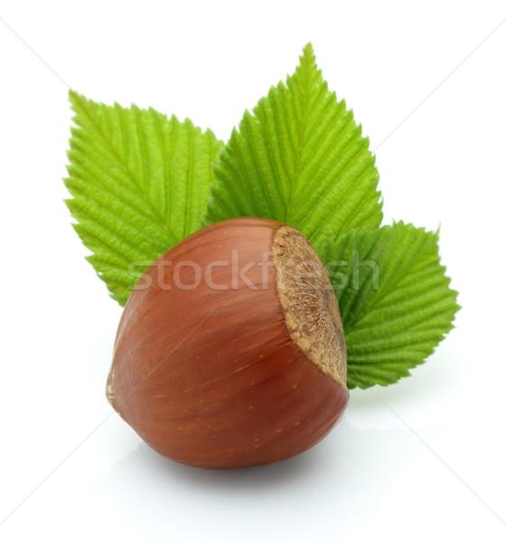 Ein Blätter Essen grünen Saatgut Makro Stock foto © Dionisvera