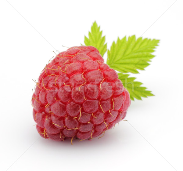 Raspberry with leaves Stock photo © Dionisvera