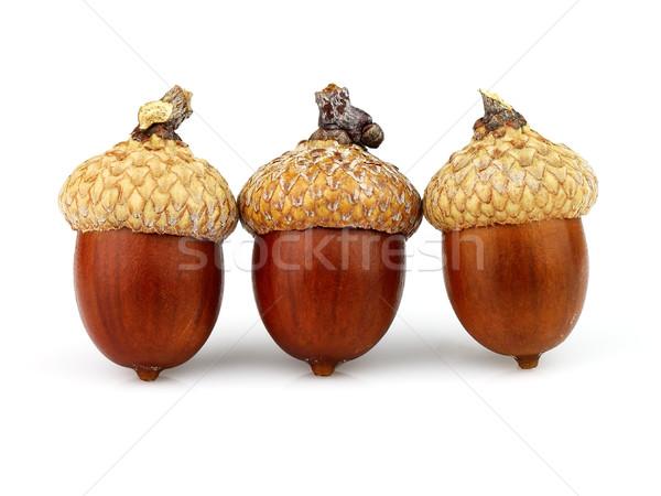 белый продовольствие фрукты семени макроса здорового Сток-фото © Dionisvera