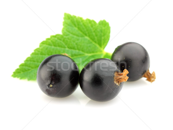 Stock photo: Blackcurrant with leaves
