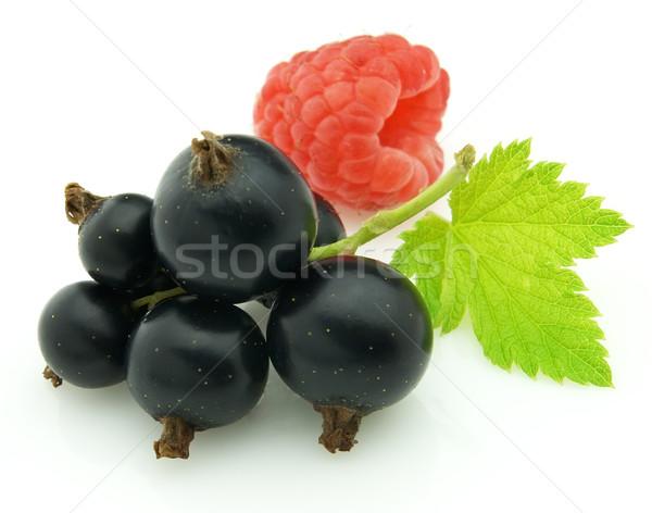 Stock photo: Blackcurrant with raspberry